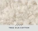 Tree-Silk Cotton